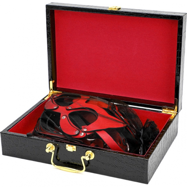 БДСМ набор аксессуаров в черном кейсе Bad Kitty Red